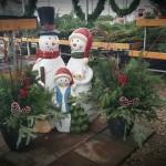 SNowmen family & planters
