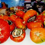 graff.gardens.&.Farm.fall.turks.tubins