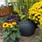 graff.gardens.&.Farm.pottery10