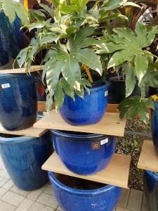 graff.gardens.&.Farm.pottery7