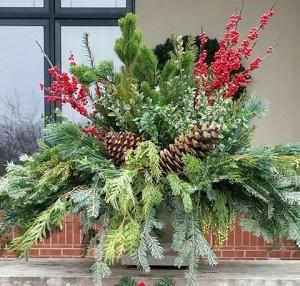 graff.gardens.winter.planter