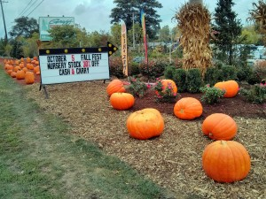 Fall-Fest-2013-entrance-graff-gardens