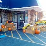 fall-2013-restaurant-decoration-graff-gardens