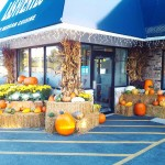 fall-2013-restaurant-decoration-2-graff-gardens