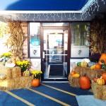 fall-2013-restaurant-decoration-3-graff-gardens