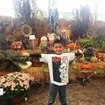 fall-fest-2013-display_1E