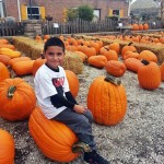 fall-fest-2013-pumpkin-patchE