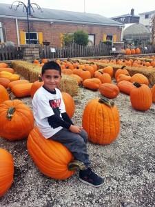 fall-fest-2013-pumpkin-patchE