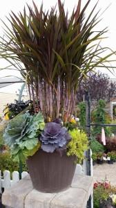 graff,gardens,&,Farm,Fall,custom,planter1
