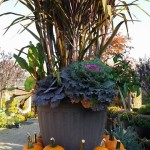 graff,gardens,&,Farm,Fall,custom,planter2