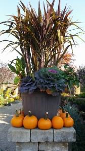 graff,gardens,&,Farm,Fall,custom,planter2