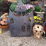 graff,gardens,&,Farm,Fall,decor