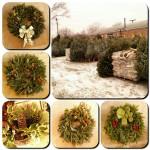 Wreaths & Firewood