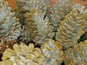 graff.gardens.white.pine.cones
